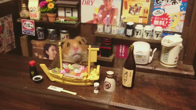 Bartending Hamsters Are One of the Cutest Things Ever