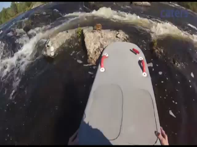 Heroic River Boarder Rescues Drowning Squirrel