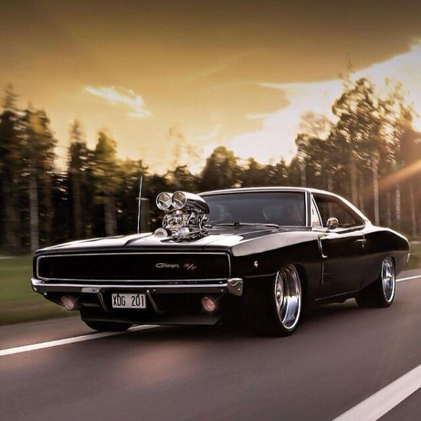 Dodge Challenger Antigo V8 >> Outdoor Photos of Flashy Cool Cars (35 pics) - Izismile.com