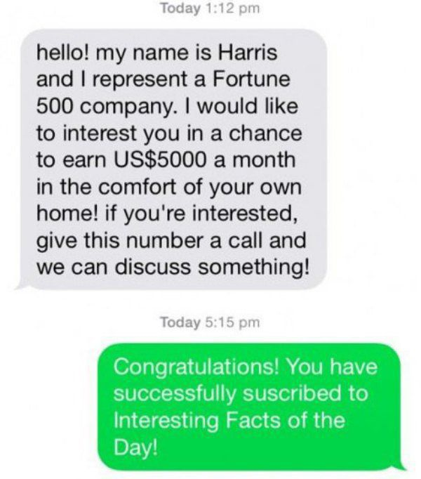 A Brilliant Troll on a Text Spammer