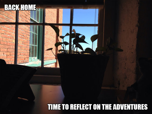 One Dude's Week-Long Adventure with a Plant