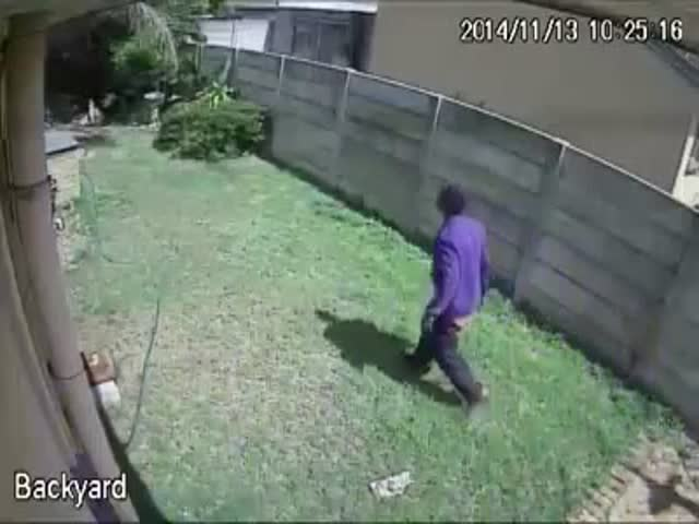 Ferocious Animal Chases Burglar Away