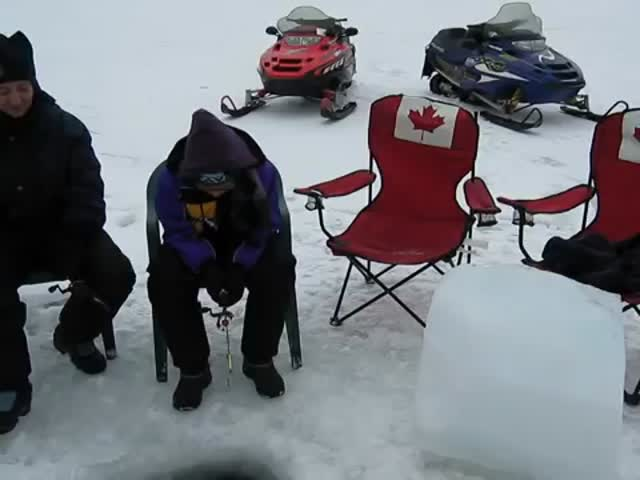 Meanwhile, in Canada...  (VIDEO)