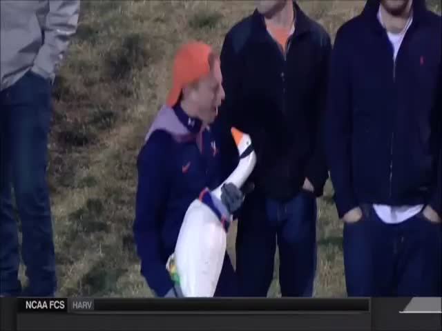 Sports Announcers Lose It as This Football Fan Sings to a Goose  (VIDEO)