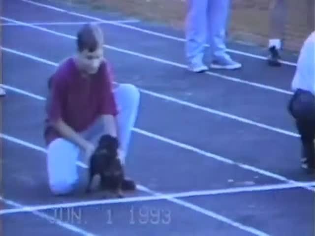Dog Cheats to Win Race  (VIDEO)