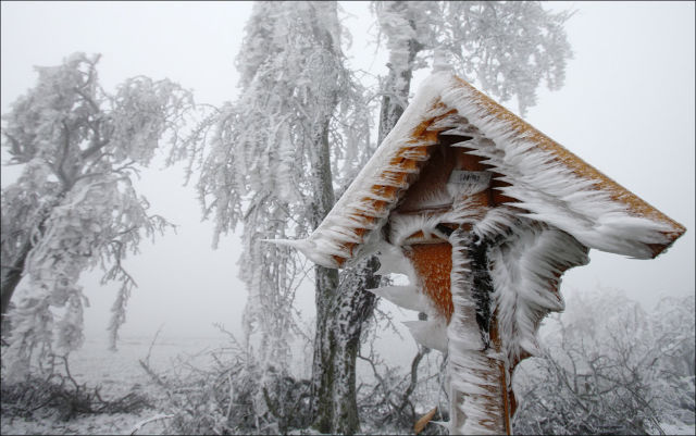 Winter Has Hit Germany, Austria and Hungary with a Bang