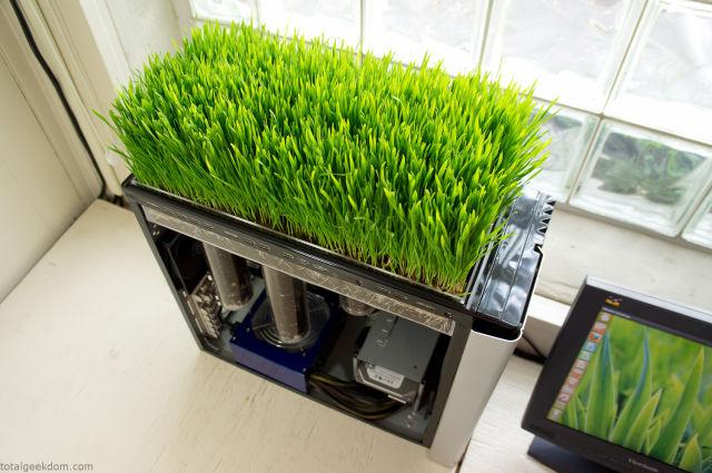 Wanna Grow Grass Over Your Computer?