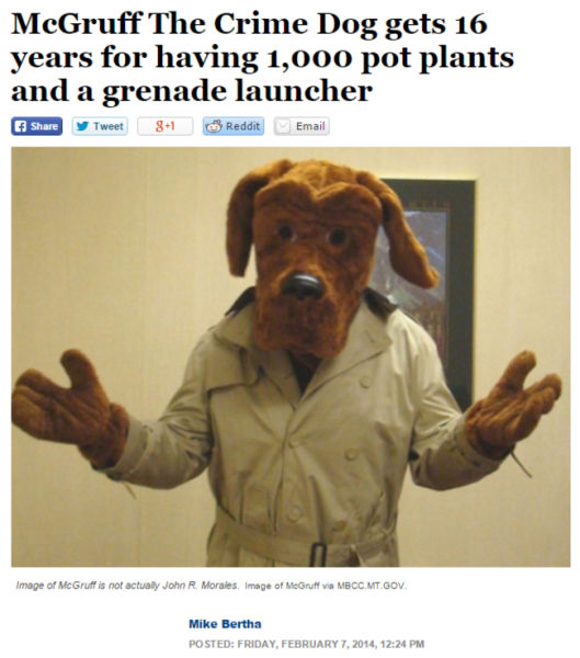 The Weirdest News Headlines from This Year