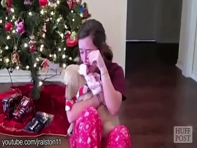 People Shedding Tears of Joy Over Receiving Puppies for Christmas