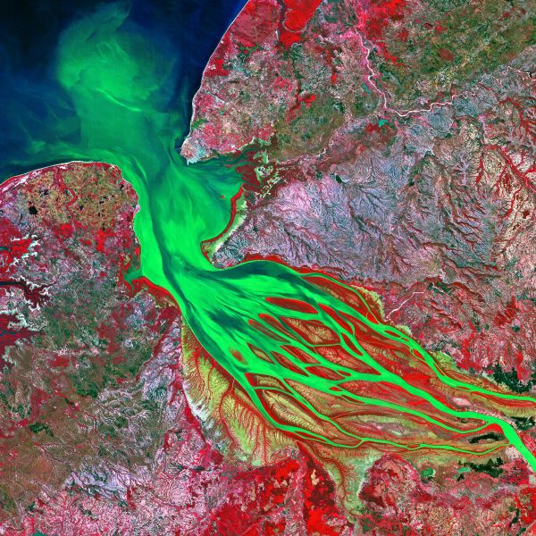 2014's Most Fascinating Science Pictures