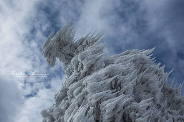A Mountain and Everything on it Turns Into Ice After 10 Days of Freezing Weather