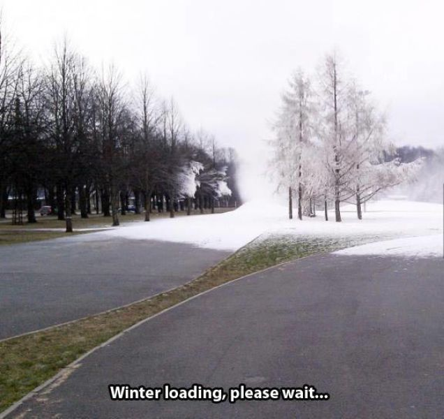 Damn Cold Signs