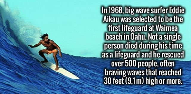 Random Facts to Amuse Your Mind