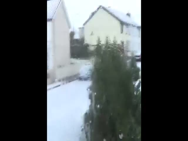 Funny Reaction to Snow in Ireland: