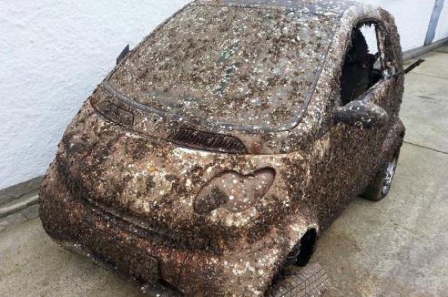 A Smart Car Is Recovered from Its Sea Grave