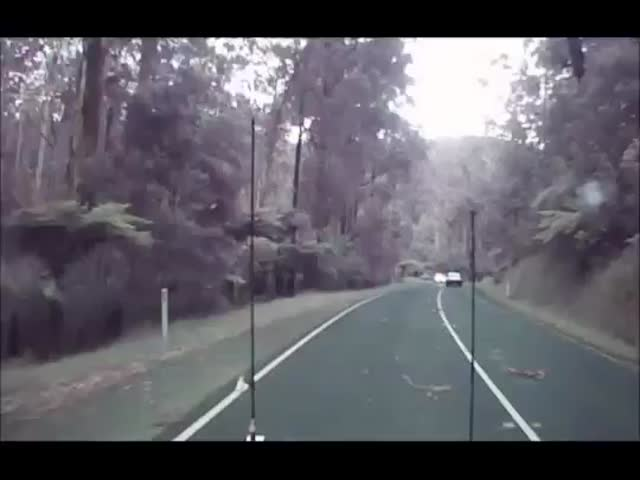 Driving during a Windstorm Can Be Very Dangerous  (VIDEO)