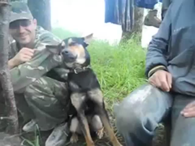 Russian Dog Struggles to Stay Awake after Night Fishing Trip