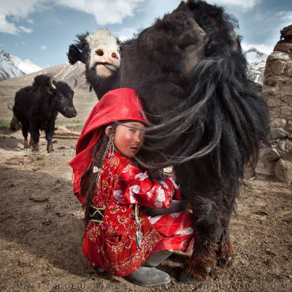 National Geographic's Instagram Account Totally Awesome
