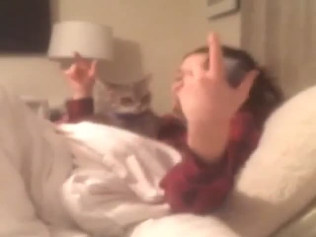 This Cat Really Hates When Its Owner Sings