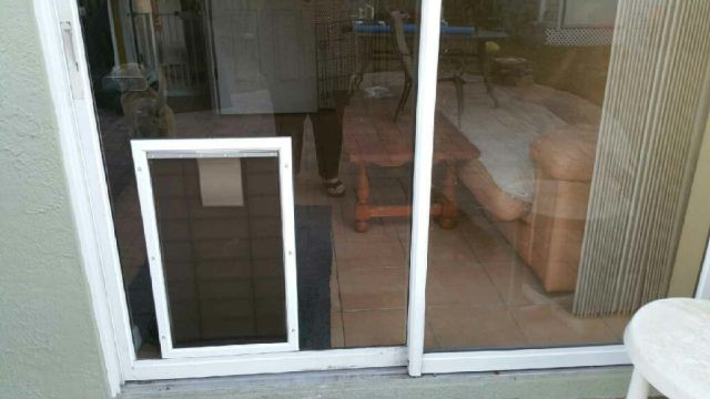 A Doggy Door That Didn't Quite Work As Planned
