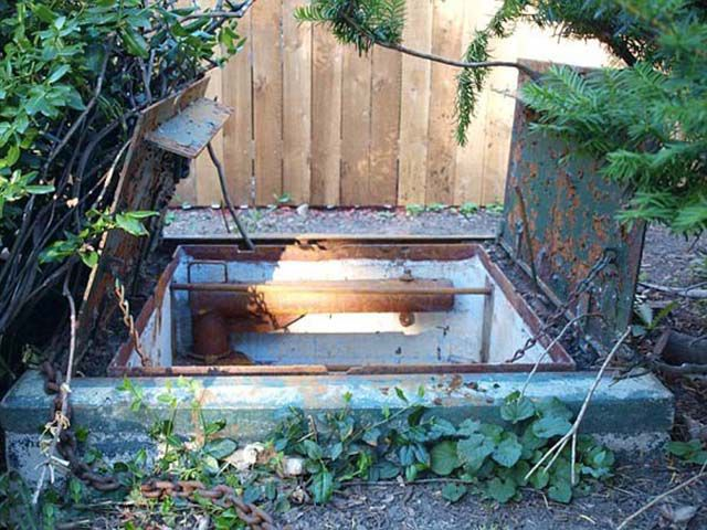 A Fascinating Discovery Under a Backyard Metal Trapdoor