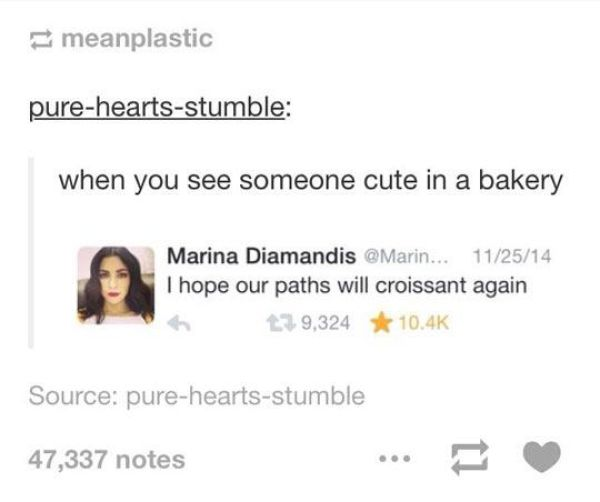 Puns Can be Both Witty and Stupid Simultaneously (70 pics