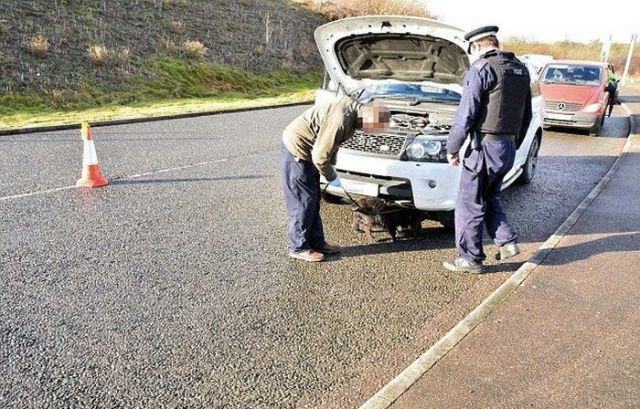 Car Theft Gang Caught and Arrested