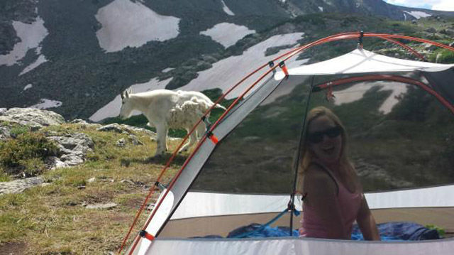 Camping Is Not for Everyone But It Definitely Has Some Pros and Cons