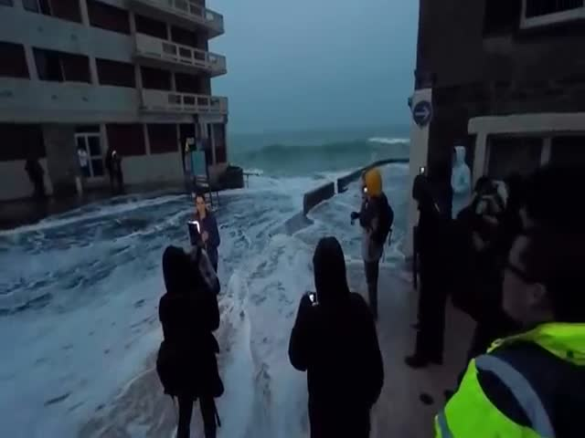 TV Reporter Gets Surprised by a Big Wave  (VIDEO)