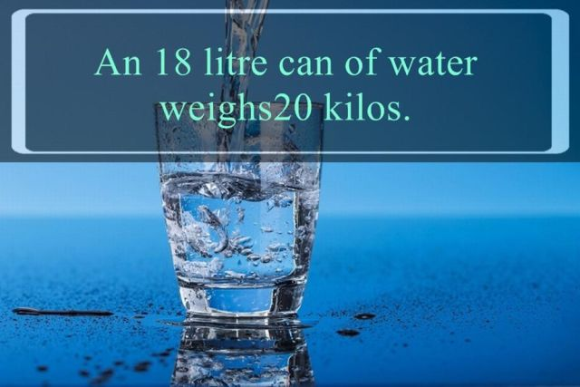 Everything You've Ever Needed to Know about Water