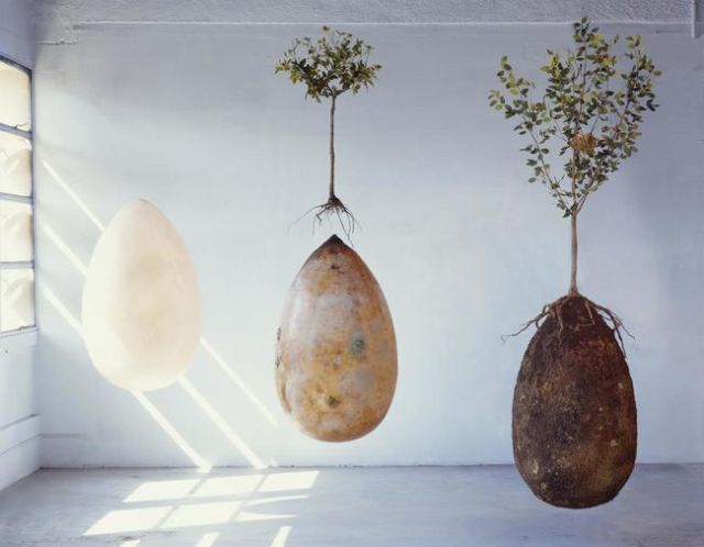 Burial Pods of the Future