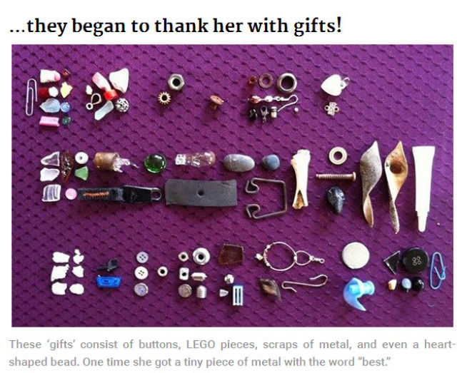 A Little Girl's Gifts from the Crows
