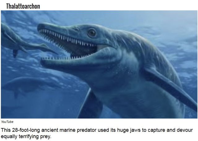 Ancient Predators That Used to Roam the Earth