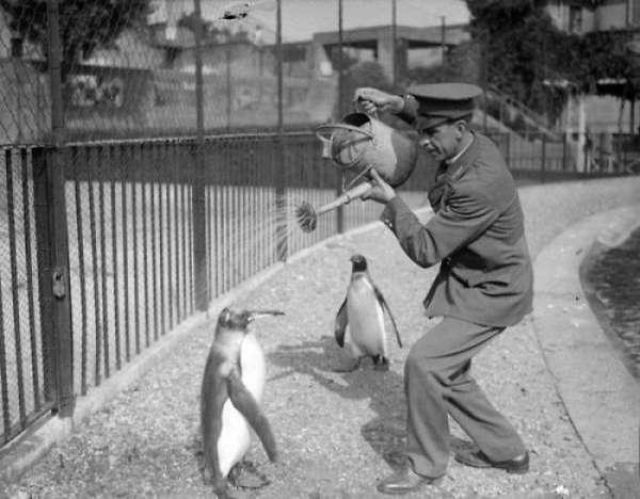 Vintage Snaps of People and Animals Who Have Always Been Cool