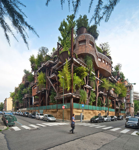 An Urban Treehouse That Is a Sanctuary in the City
