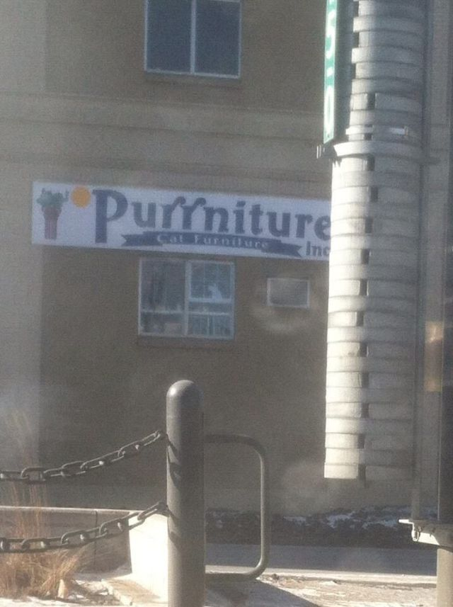 There Is Something Hilarious about Bad Puns