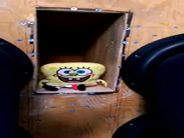 SpongeBob Loves the Bass!