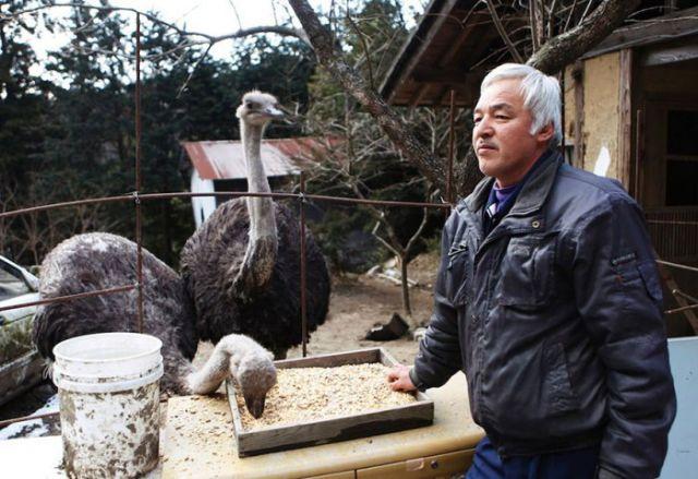 The Animal Saviour of Fukushima