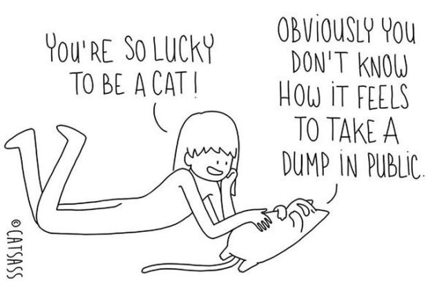 If Your Cat Could Talk This Is What He Would be Saying to You