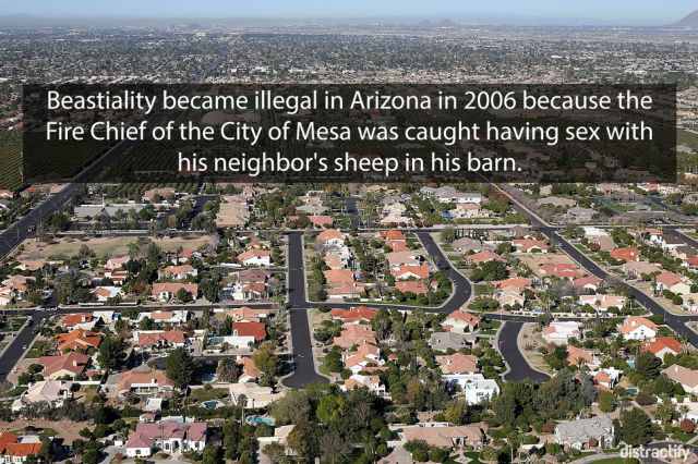 Weird and Wonderful Facts about US Cities