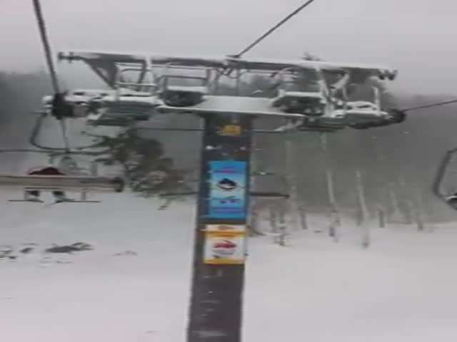 Tree vs Ski Lift
