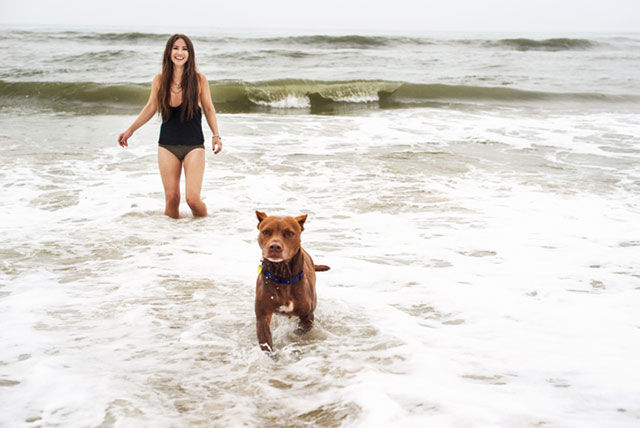 This Pitbull's Last Family Holiday will Bring You to Tears