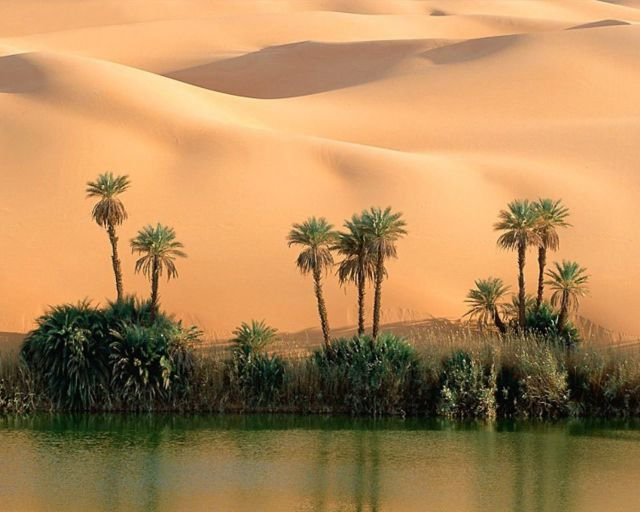 A Spectacular Desert Oasis in the Middle of the Sahara