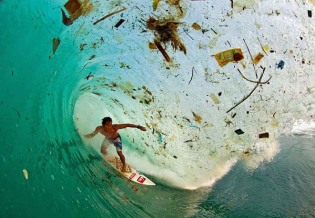 The Shocking Reality of Life on Earth