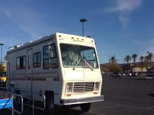 This RV Owner's Gonna Regret He Didn't Take His Dog with Him
