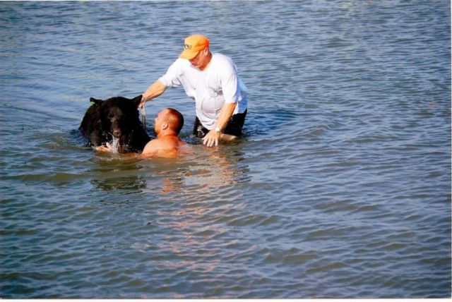 Brave Man Risks Drowning to Save a Sleepy Bear