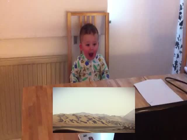 Babies Reacting to the 'Star Wars: Episode VII' Trailer  (VIDEO)