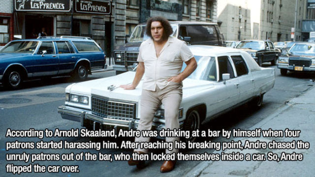 In Fond Memory of Andre the Giant