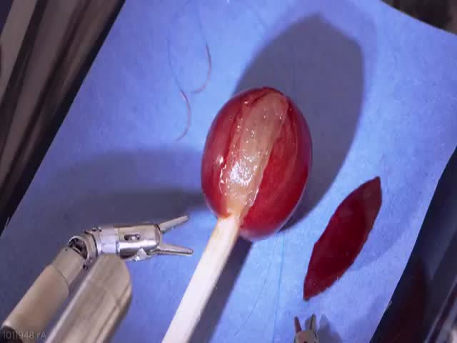 Da Vinci Surgery Robot Stitches Grape Back Together  (VIDEO)