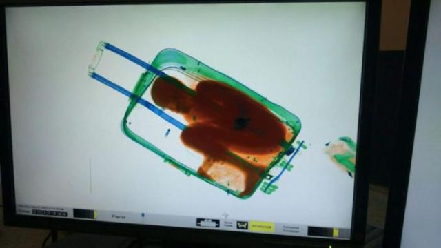 You Will Not Believe What This Woman Tried to Smuggle through Customs